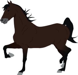Saddlebred icon