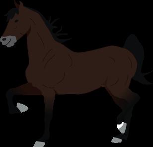 Saddlebred icon
