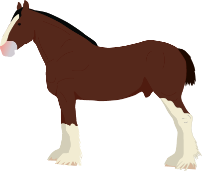 Clydesdale icon