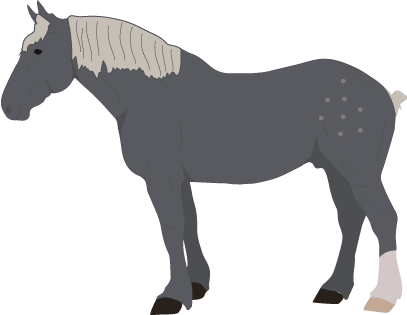 Percheron icon