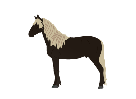 Rocky Mountain Horse icon