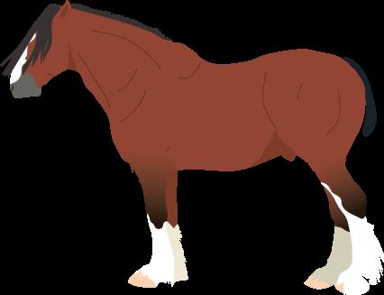 Shire icon