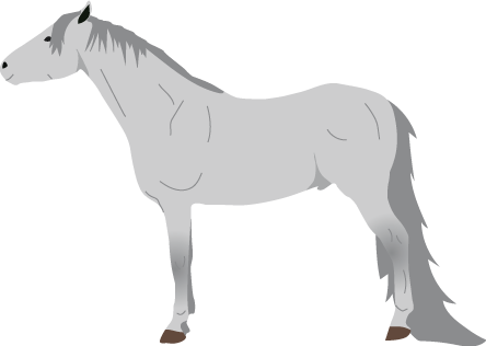 Tennessee Walking Horse icon