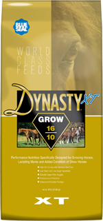 Dynasty XT Grow 16/10 image