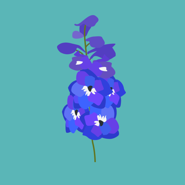 image of Larkspur