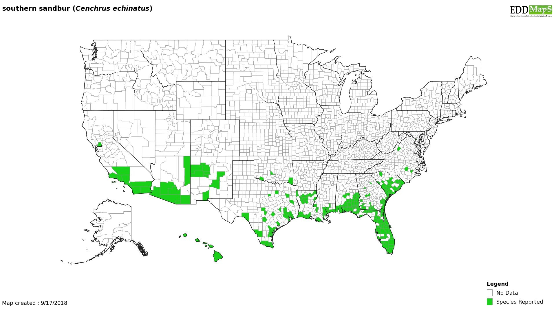 Southern sandbur distribution - United States