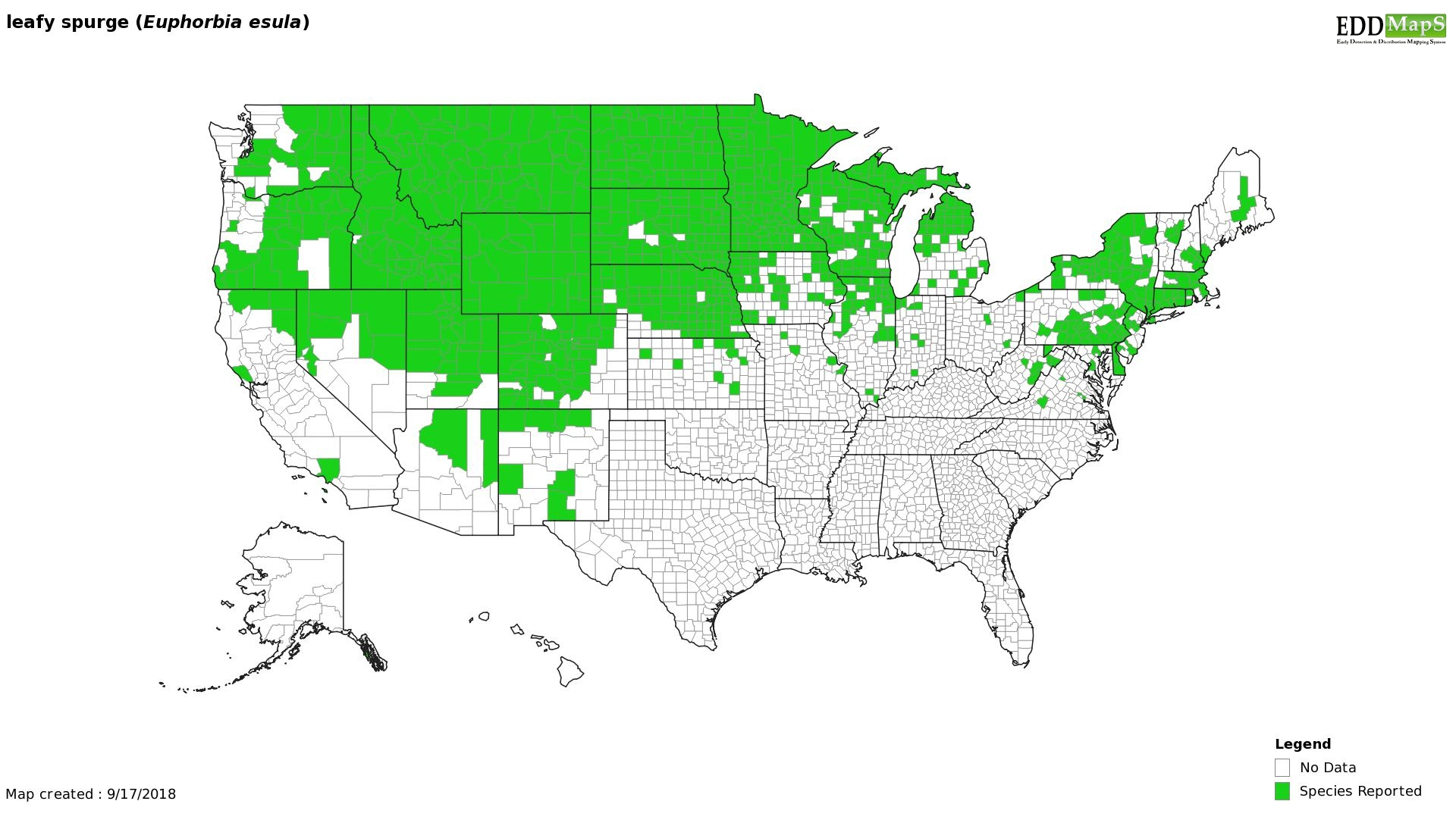 Leafy Spurge  distribution - United States