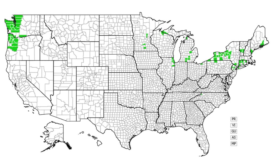 Giant hogweed distribution - United States