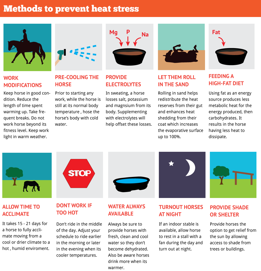 Methods to prevent heat stress