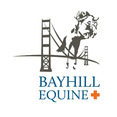 Bayhill Equine