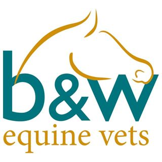 B&W Equine Group Breadstone Clinic