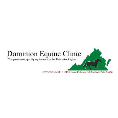 Dominion Equine Clinic