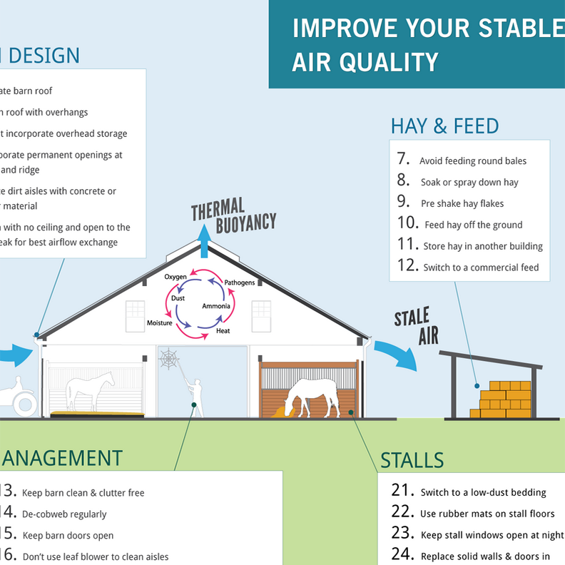 25 Ways to Improve your Stable's Air Quality
